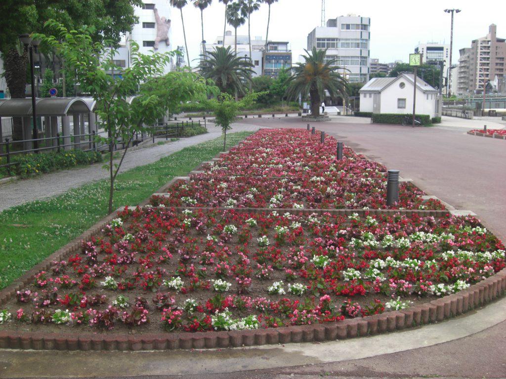 徳島市 花壇植栽