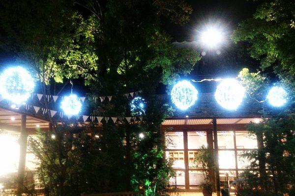 徳島市 店舗
