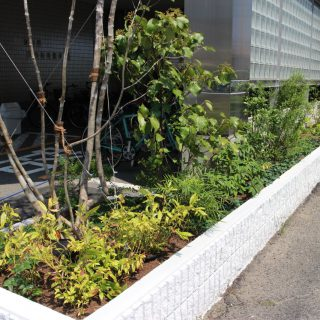 徳島市 教習施設